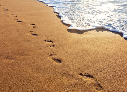 https://sgiumc.org/wp-content/uploads/2017/03/footprints.png